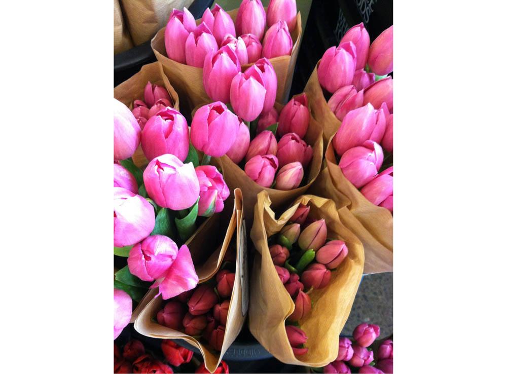 Бог купить голандский тюльпан в москве картошка