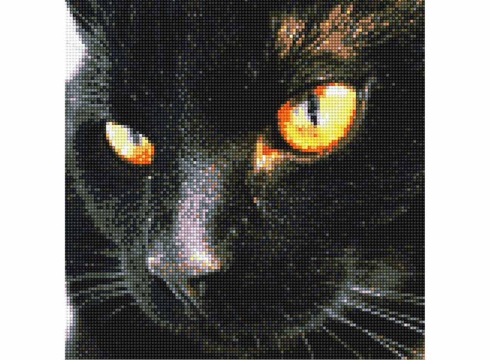 Алмазная вышивка чёрная пантера 96