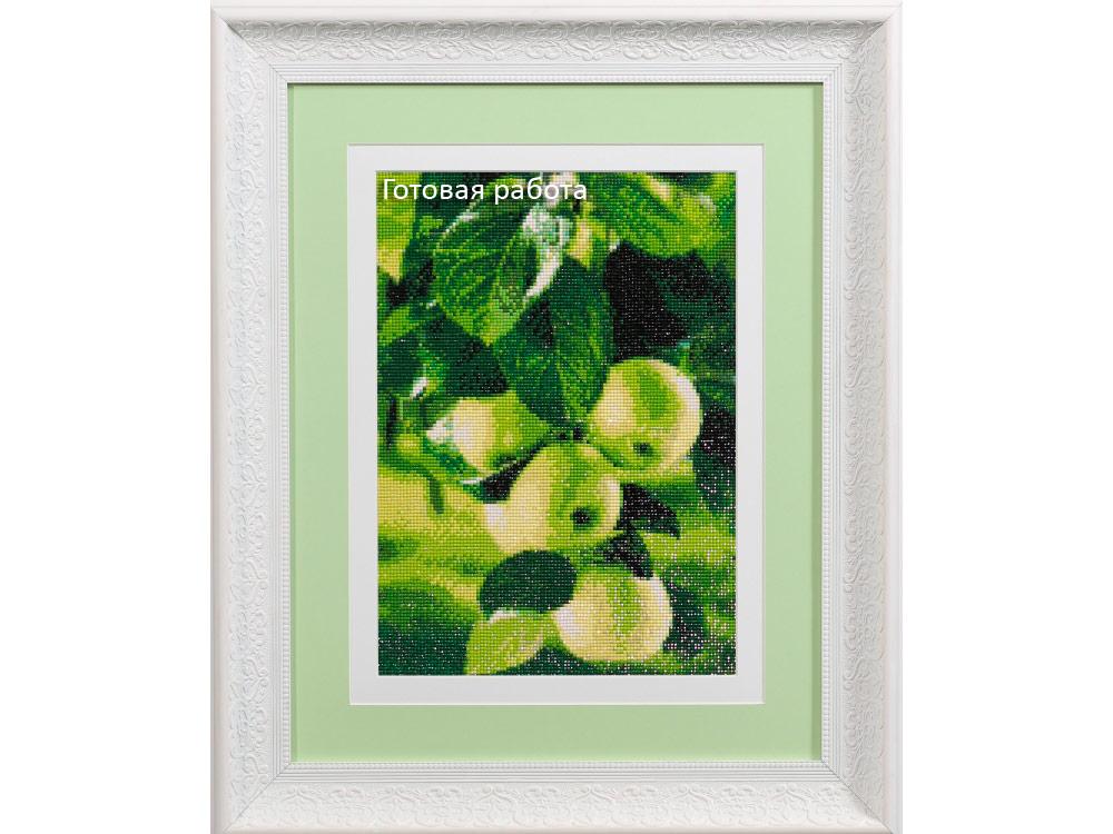 Алмазная вышивка зеленые яблоки 84