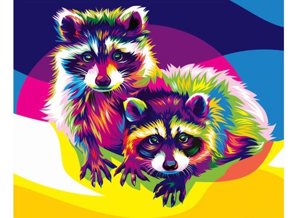 Енот рисунок цветной