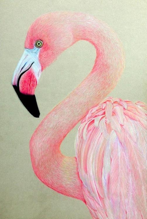 Розовый фламинго в цветах