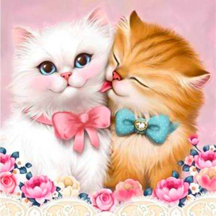 Красивый котик открытка