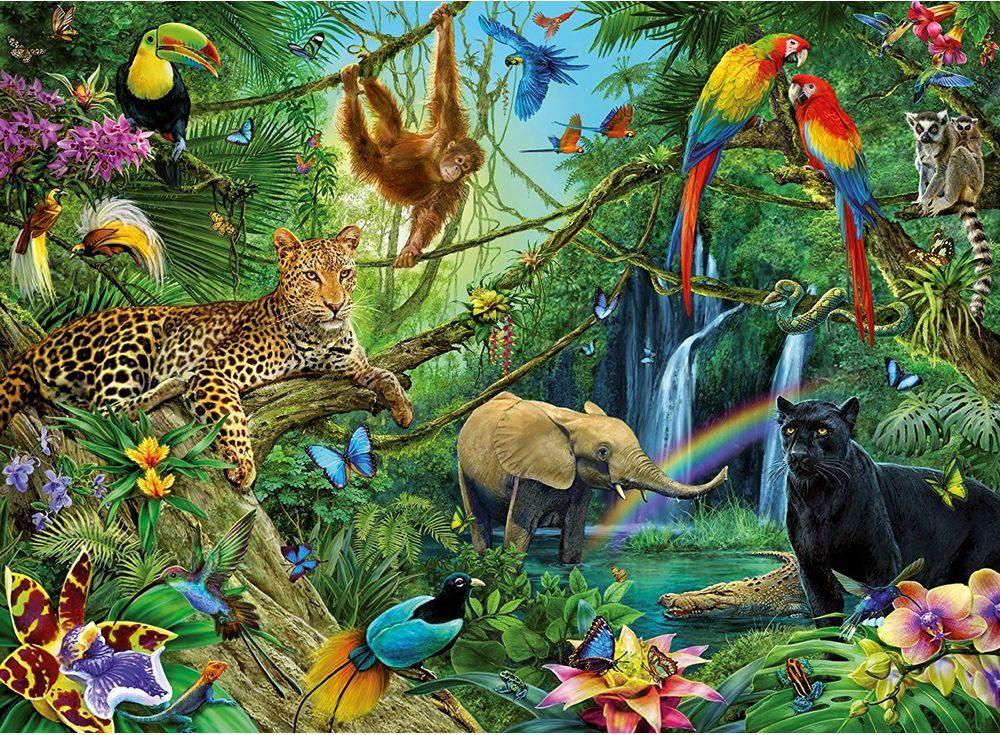 картинки животные цветы яркие оазис тропики ресторана