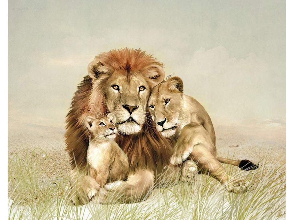 Семья львов картинки детские