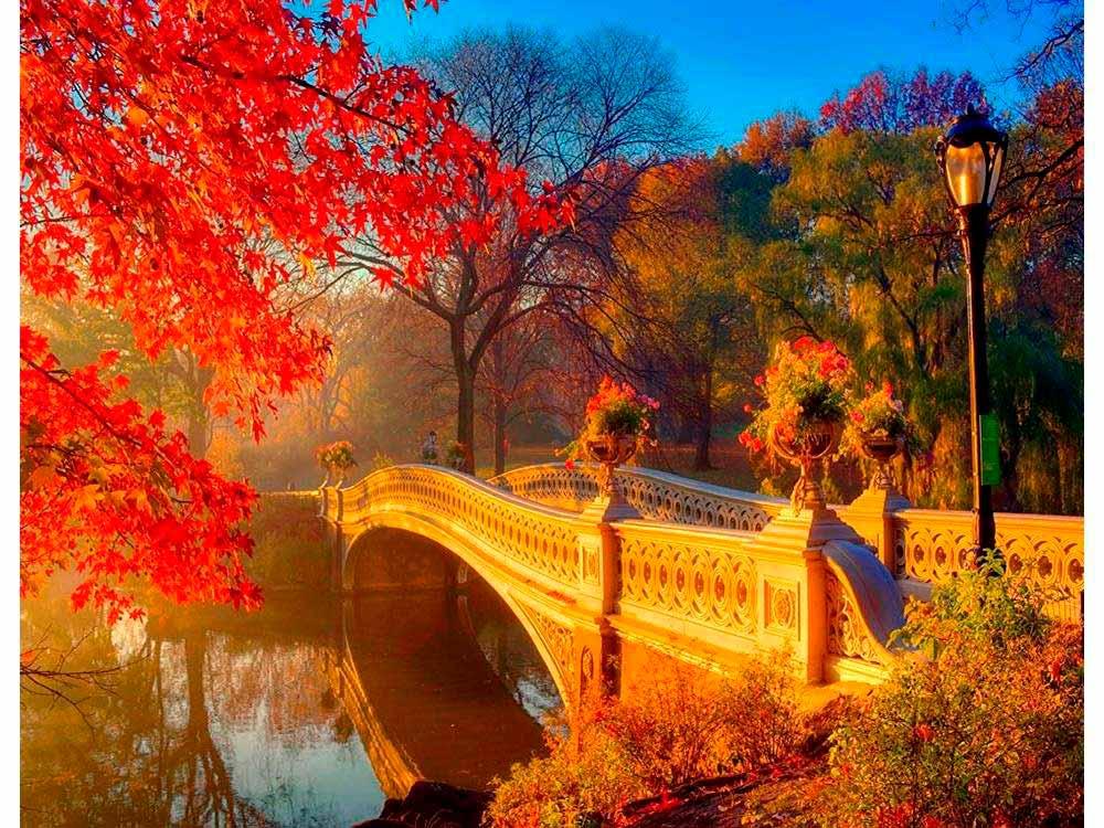 Картина по номерам мост