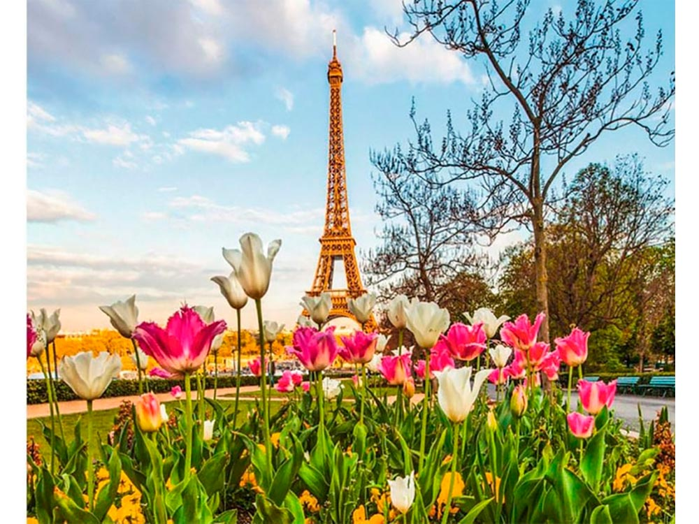 Фото весны в париже