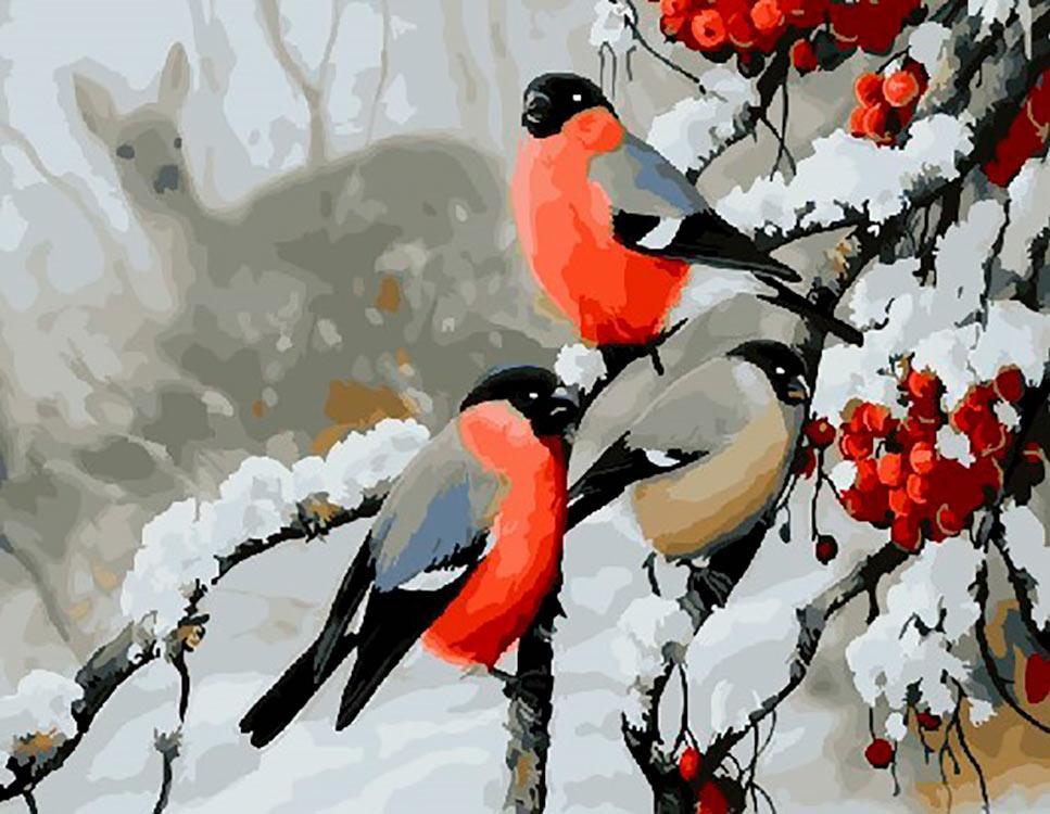 Днем, картинки птицы зимой